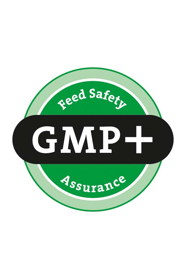 GMP - Food Safety